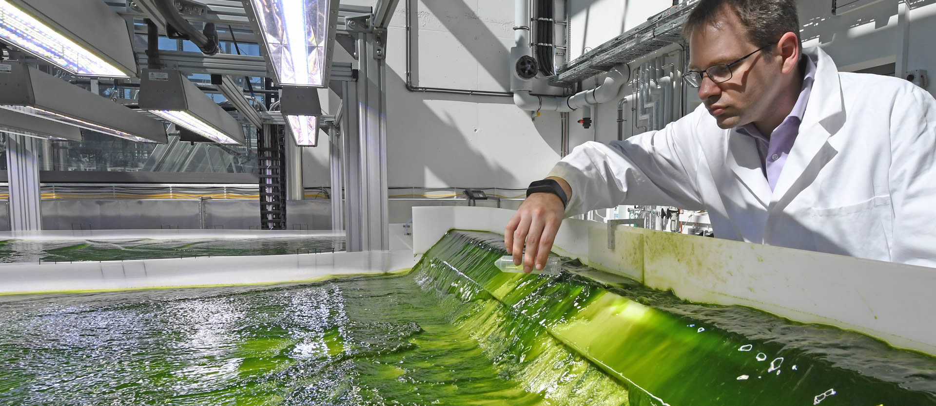 Algae and the Future of Aviation